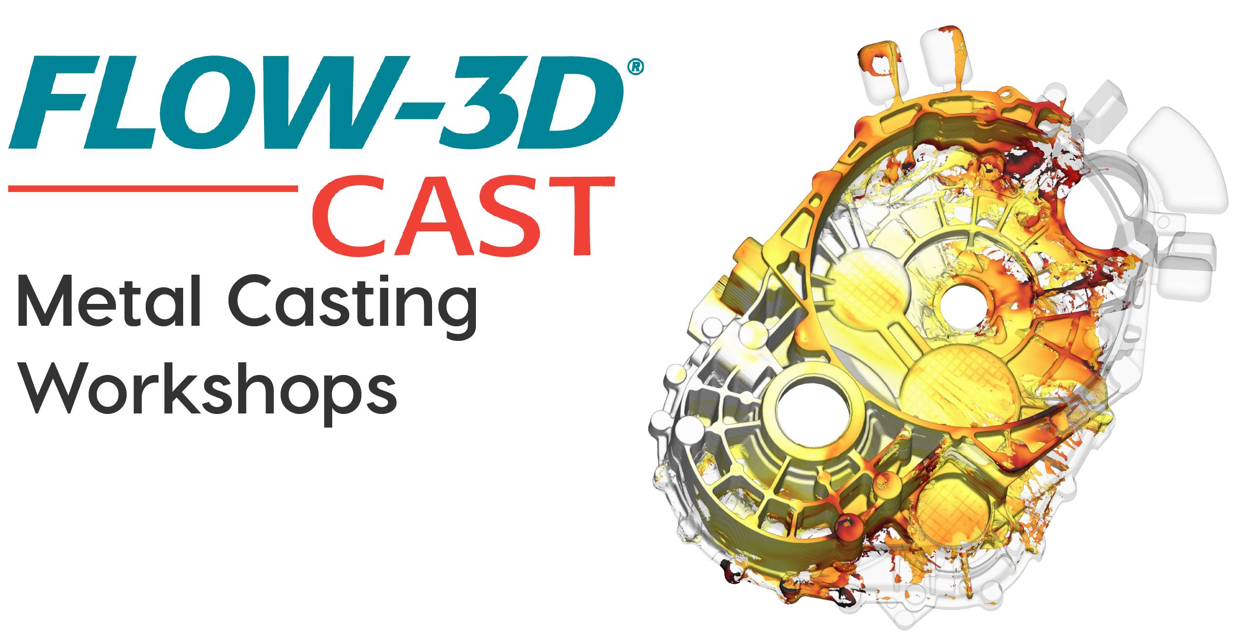 FLOW-3D CAST Workshops